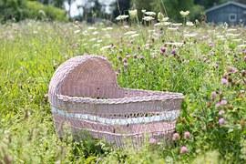 baby-bassinet-554083__180